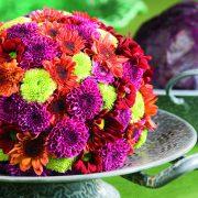 Kugel bunte Chrysantheme
