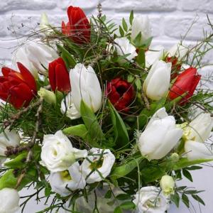 Blumenstrauss mit weißen und roten Tulpen