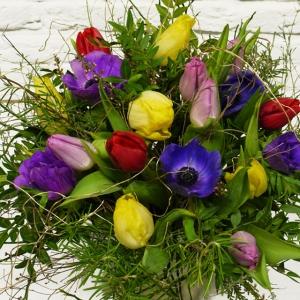 bunter Blumenstrauss mit Tulpen und Anemonen im Frühjahr Lieferung in Kiel