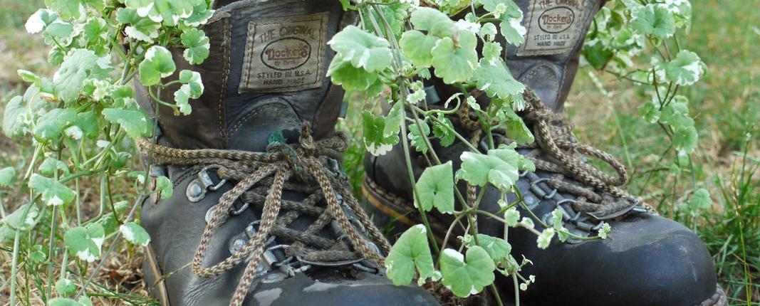 zeigt her eure Schuhe: Wanderschuhe mit grünem Look