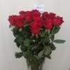 Rose 1m