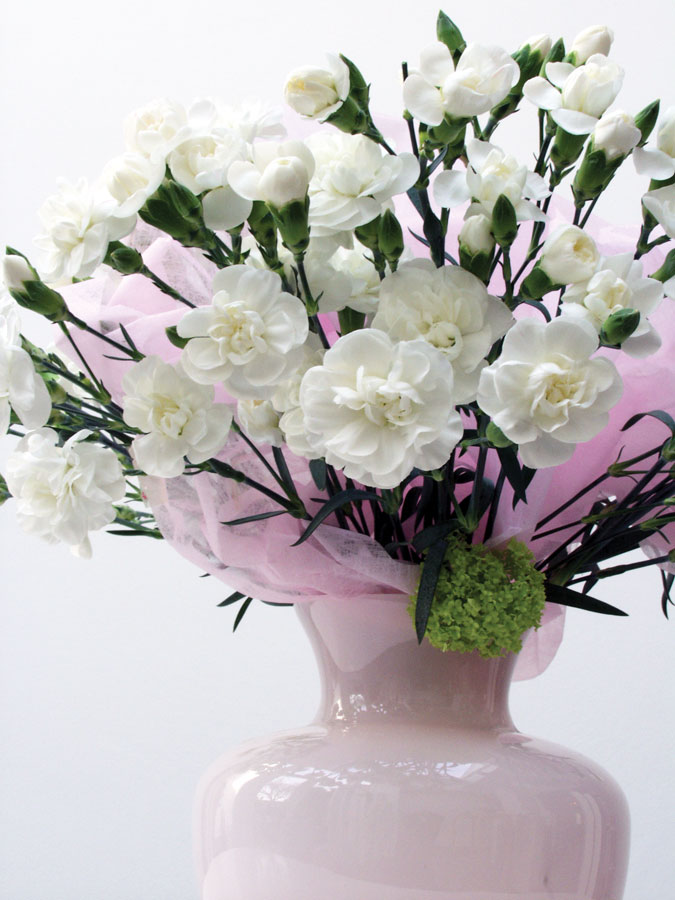 weiße Nelken in hellrosa Vase