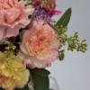 Blüten der Nelken in Gelb und Rosa-Weiß