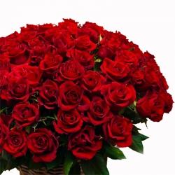 Bouquet rote Rosen