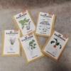 Bio Saatgut Samentüten Kräuter und Gemüse