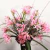 großer Blumenstrauß aus rosa Nerinen