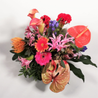 großer exotischer Blumenstrauß mit orange Calla, pink Gerbera, rosa Nerine, gelbrote Calla, rote Anthurie