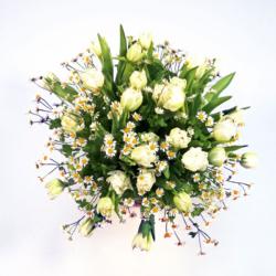 rundgebundener Frühlingsstrauß mit weißen Tulpen und Kamille