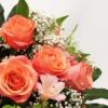 orange-farbene Blüten der Rose mit Schleierkraut und rosafarbener Inkalilie