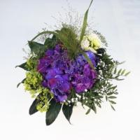 kleiner Hortensienstrauß, mittig lila Hortensie, Frauenmantel, Lisianthus, Schleierkraut